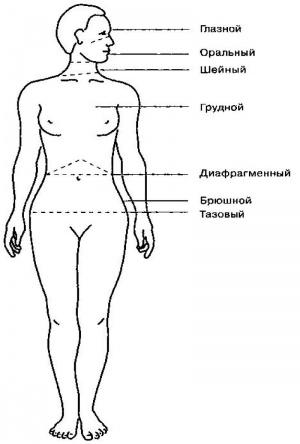 Характерный или мышечный панцирь